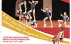 1/2 FINALE NORD du Championnat de France de Gymnastique Aérobic